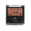 Blush 06 - Terracotta