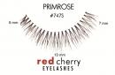 Gene false Red Cherry #747S Primrose